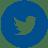 Twitter Big Idea Icon