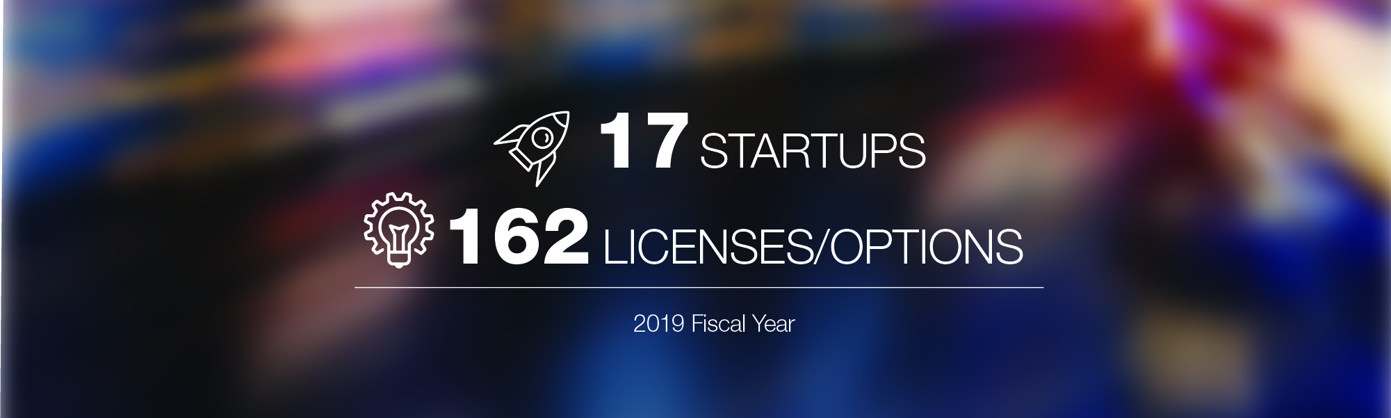 Startups Licenses 2019